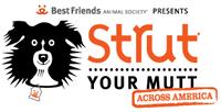 Strutt your mutt